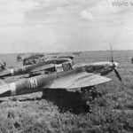 Ilyushin Il-2M code 19 and 16