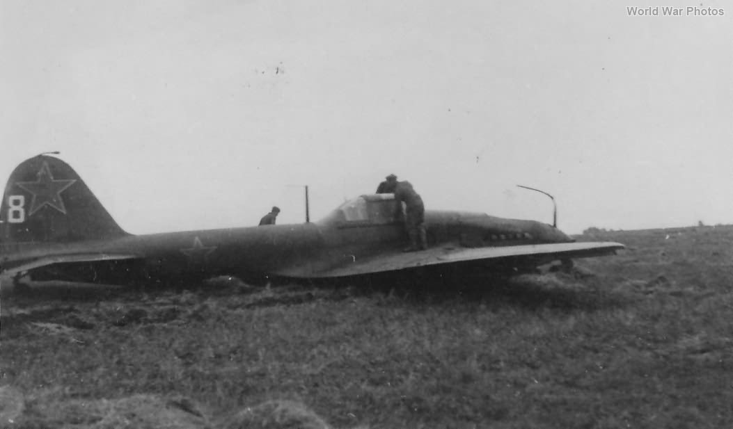 Early Il2 8