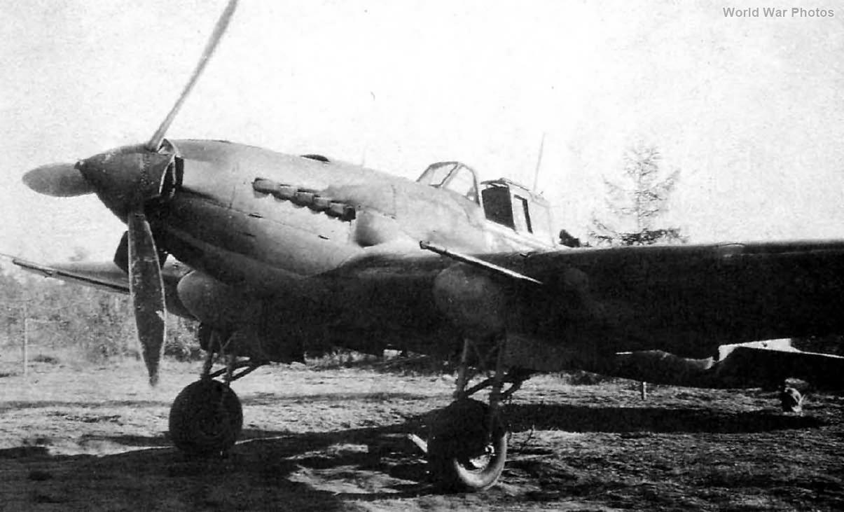 Il-2 566 ShAP