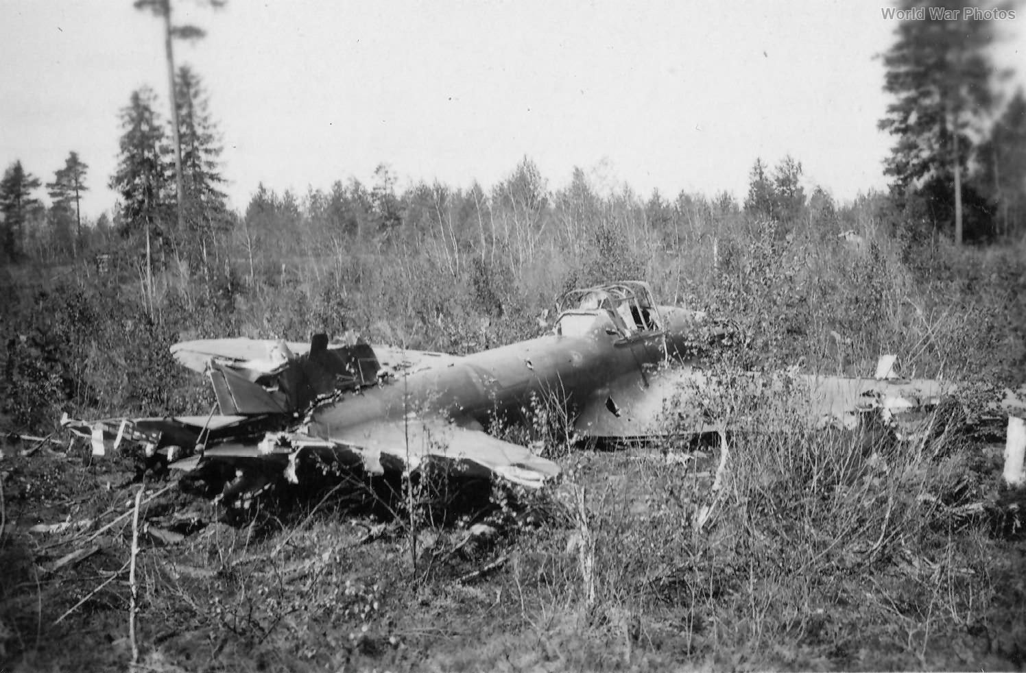 Wreck of Il2